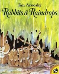 RabbitsandRaindrops