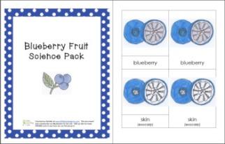 BlueberryFruit1
