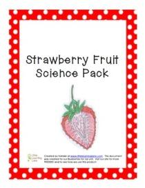 StrawberryFruitPack1