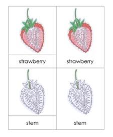 StrawberryFruitPack2
