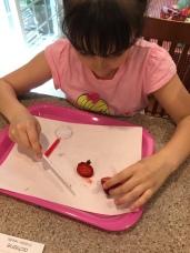 strawberryscience3