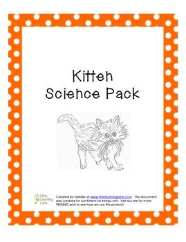 cat-kittenpack