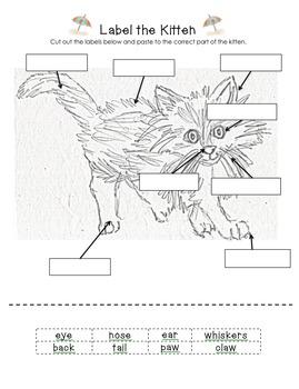 cat-labelthecat