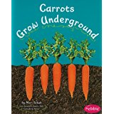 Carrots Grow Underground