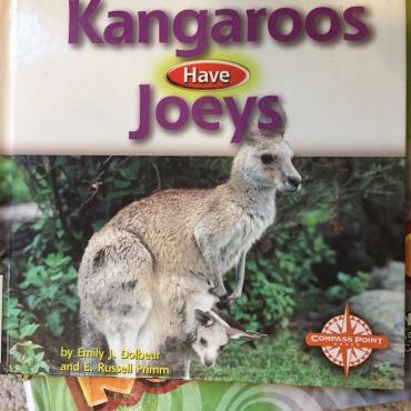 book_kangaroo4