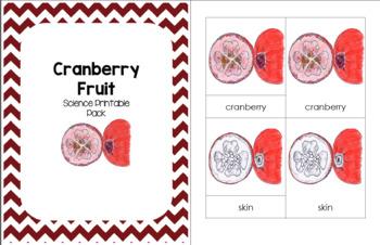 Cranberry Fruit1