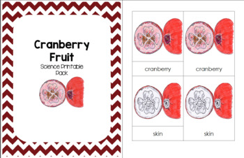 Cranberry Fruit1