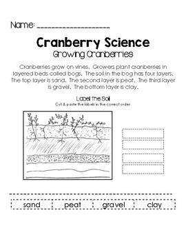 CranberryScienceGrowingCranberries