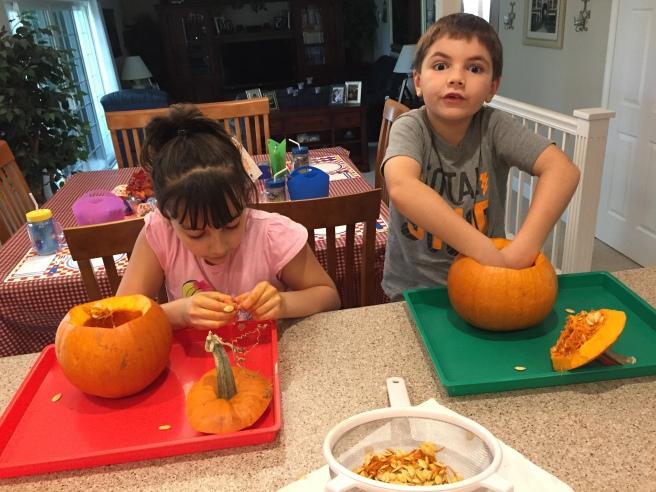 pumpkinseeds2016.JPG